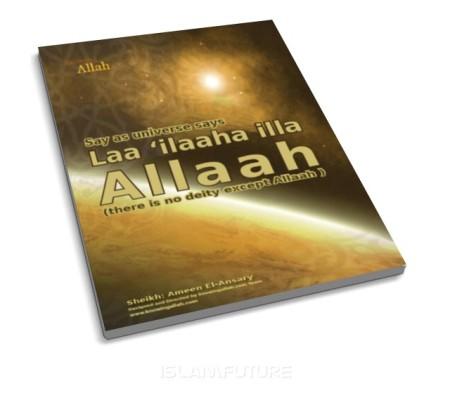 http://futureislam.files.wordpress.com/2011/09/say-as-universe-says-laa-ilaaha-illa-allaah.jpg