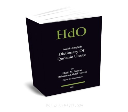 http://futureislam.files.wordpress.com/2011/10/arabic-english-dictionary-of-quranic-usage.jpg?w=500&h=440